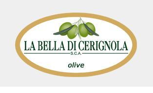 Olives La Bella di Cerignola