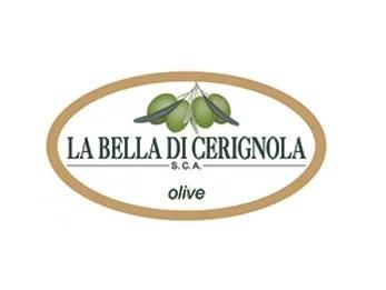 Olive La Bella di Cerignola