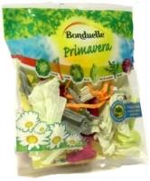 "Fridge Magnet Bonduelle Primavera ""Salad"" 74 x 80 mm"