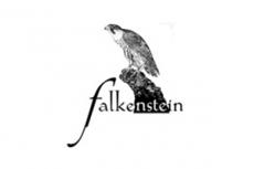 Falkenstein - Franz Pratzner