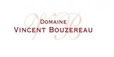 Vincent Bouzereau
