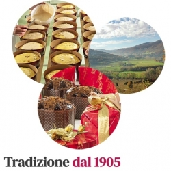 Panettoni Albertengo - Gentile